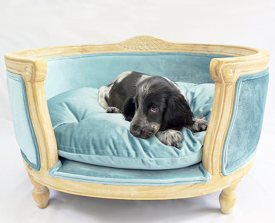 Blue velvet dog bed