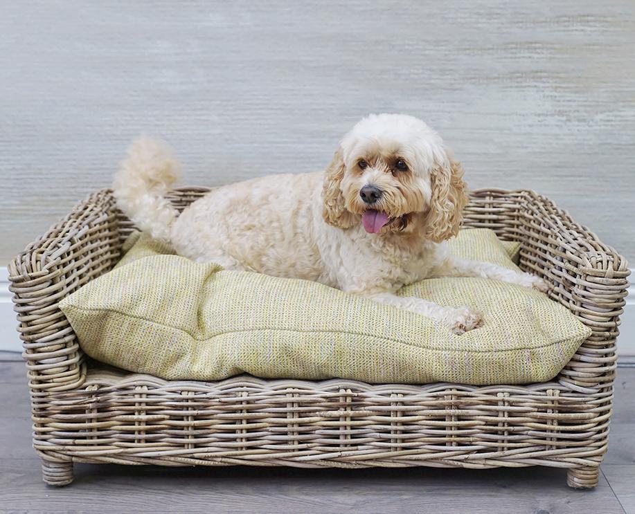 Kuba large dog basket