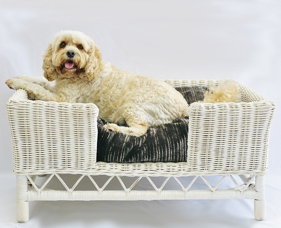 Large white wash rattan dog bed