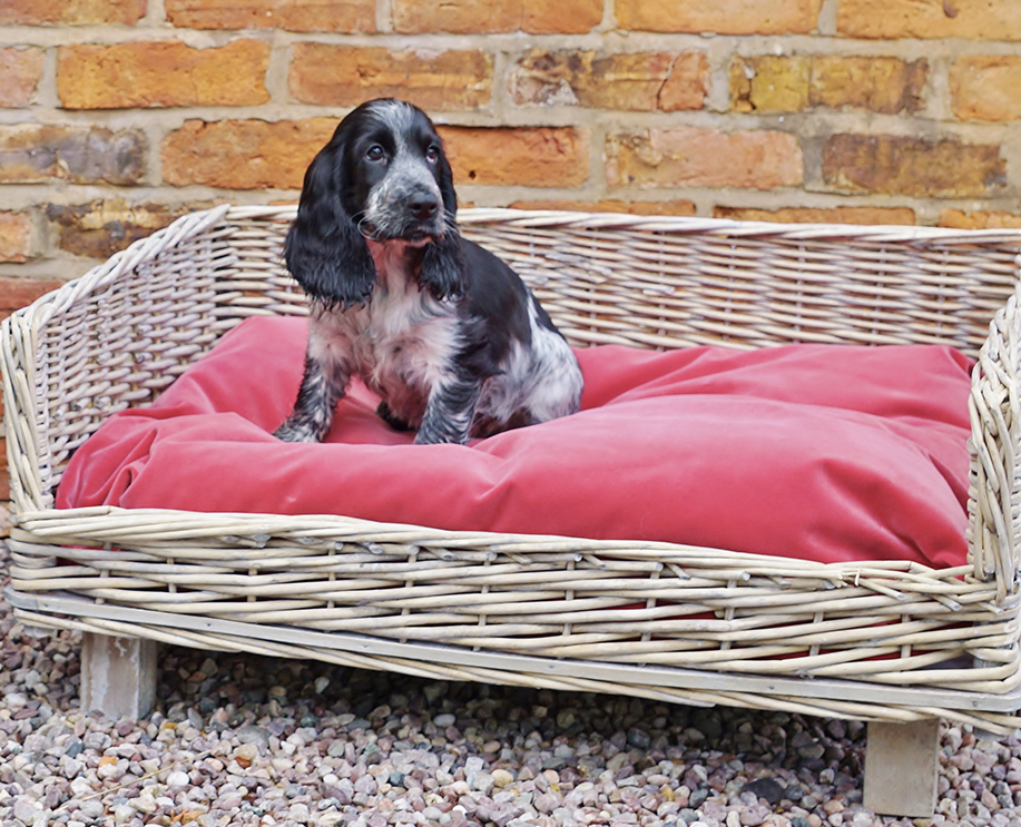 Willow dog beds
